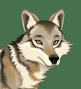 Beta Wolf Emoji - Financial Wolves