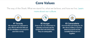 billshark values