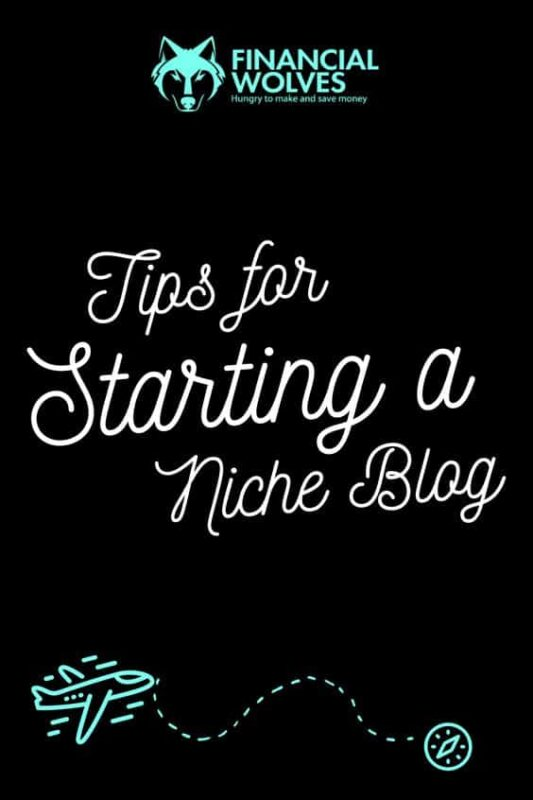 Steps for Starting a Niche Blog