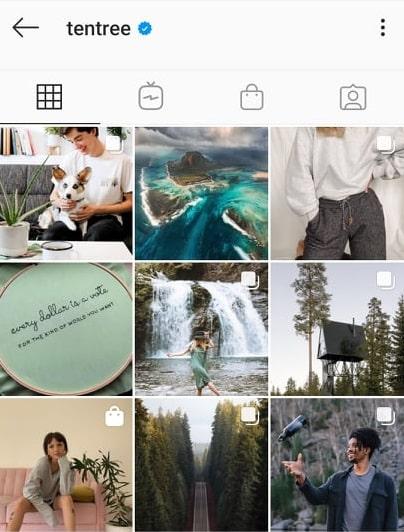 Tentree Instagram feed