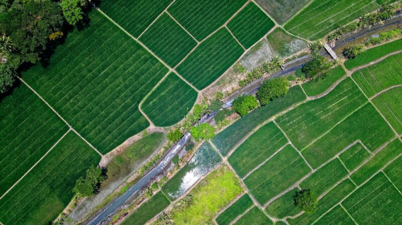 Arial View of Farm