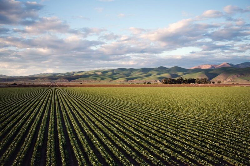 how to invest in farmland
